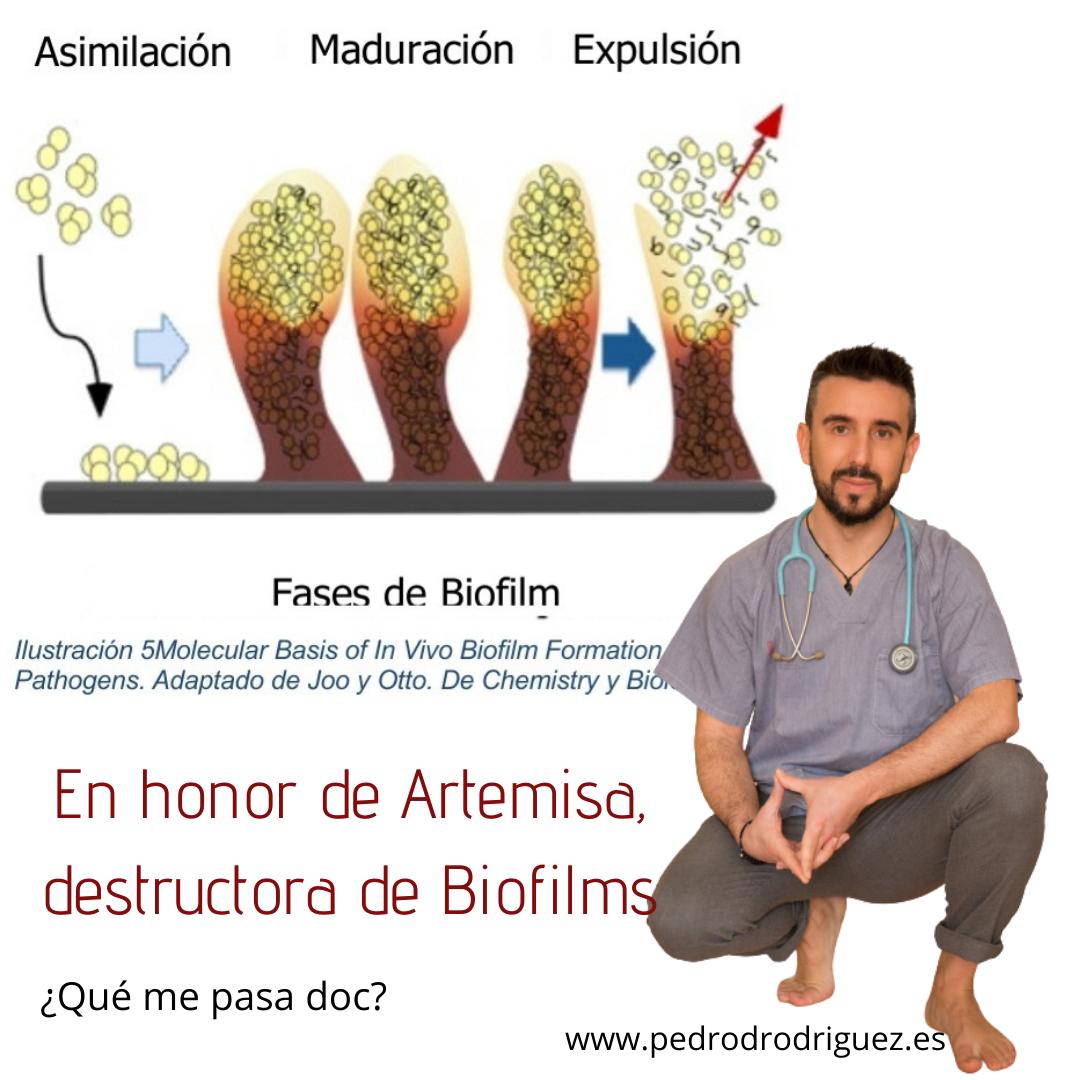 biofilm y artemisa
